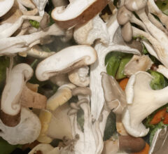 Did you know eating mushrooms can support your immune system?
